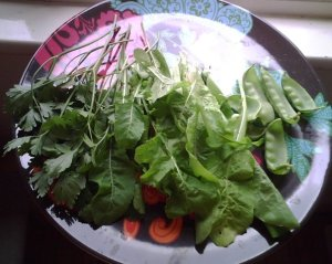 Yummy greens from my garden